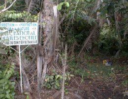 parc national des iles ehotile