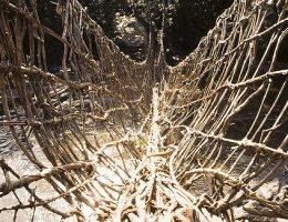 les ponts de lianes