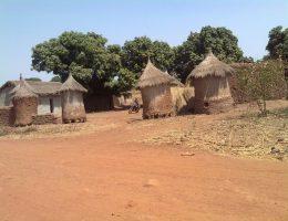 les potentialites culturelles du departement de tengrela