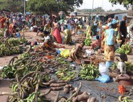 kami ngokro et les boigny deux villages un nom et une histoire intimement liee