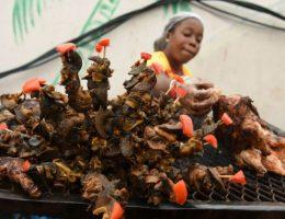mondo festival la foire aux escargots