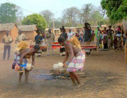 la danse du ngoron chez les senoufos